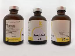 Buy Prednikel 2.5 100ml online