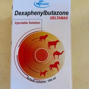Buy Phenylbutazone 100ml online , dexaphenylbutazone, dexaphenylbutazone dubai, dexaphenylbutazone american ,dexaphenylbutazone saudi arabia