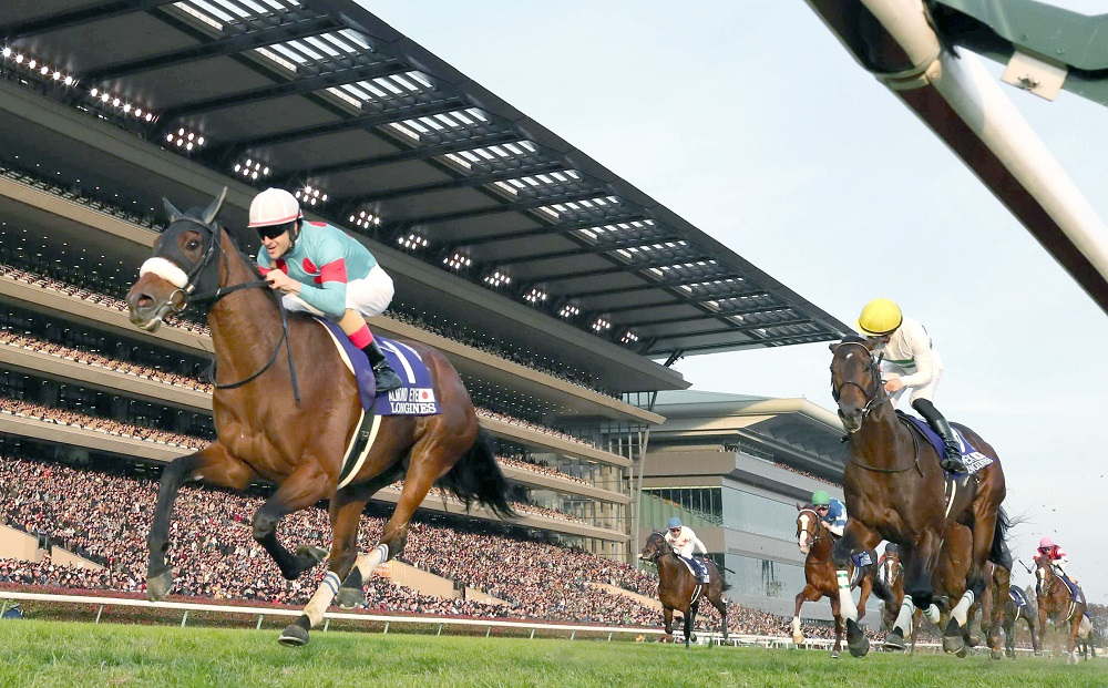 Could A Supplement Ease the Effects of Tying Up? , 日本の競馬サプリメント