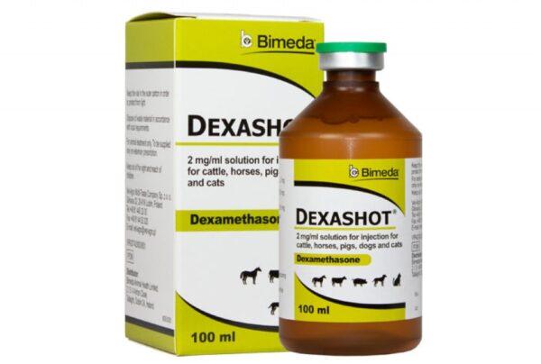 Dexashot 100ml Dexamethasone